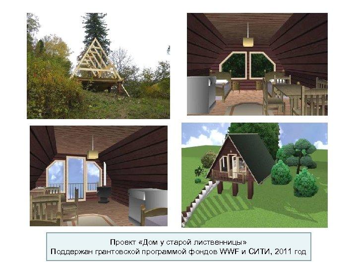 Проект «Дом у старой лиственницы» Поддержан грантовской программой фондов WWF и СИТИ, 2011 год