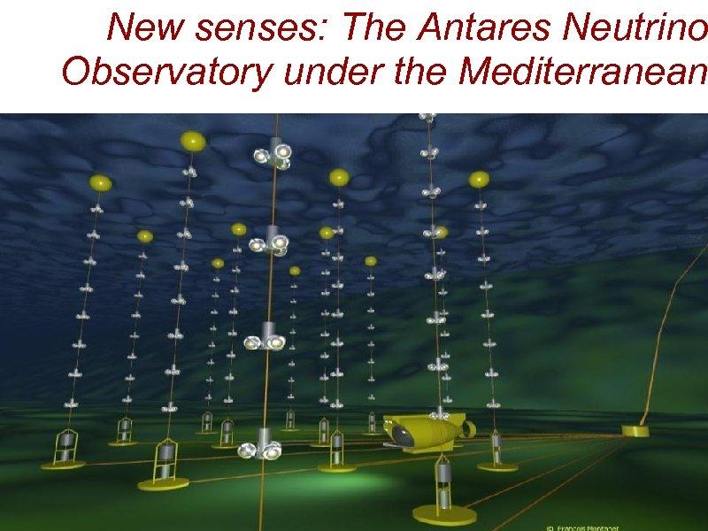 New senses: The Antares Neutrino Observatory under the Mediterranean