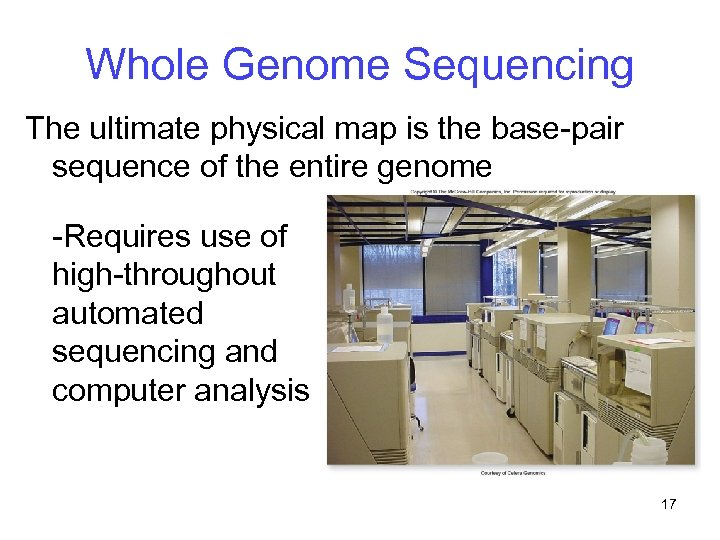 Whole Genome Sequencing The ultimate physical map is the base-pair sequence of the entire