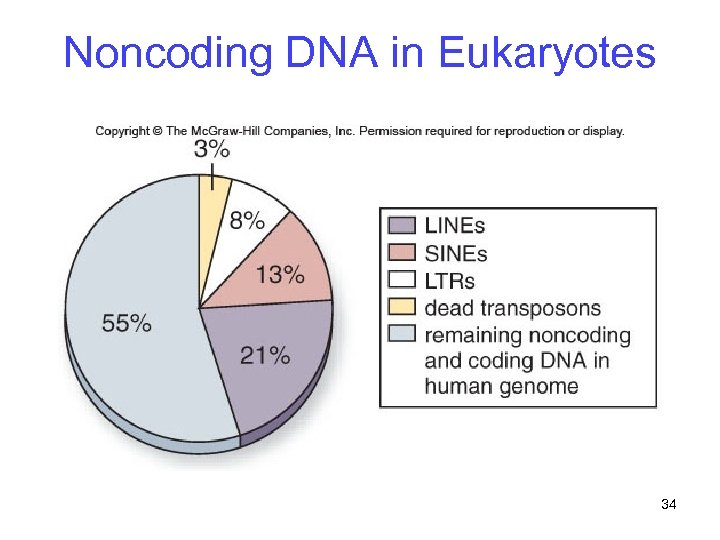Noncoding DNA in Eukaryotes 34