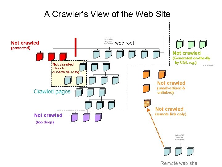 A Crawler's View of the Web Site Not crawled web root (protected) Not crawled