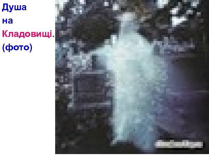 Душа на Кладовищі. (фото)