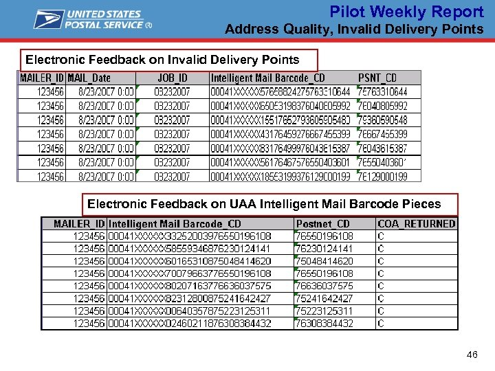 Pilot Weekly Report Address Quality, Invalid Delivery Points Electronic Feedback on UAA Intelligent Mail