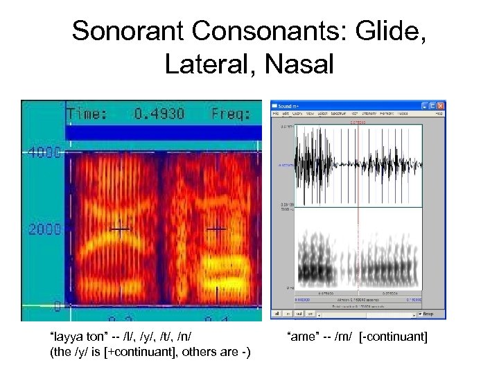 "Sonorant Consonants: Glide, Lateral, Nasal ""layya ton"" -- /l/, /y/, /t/, /n/ (the /y/"