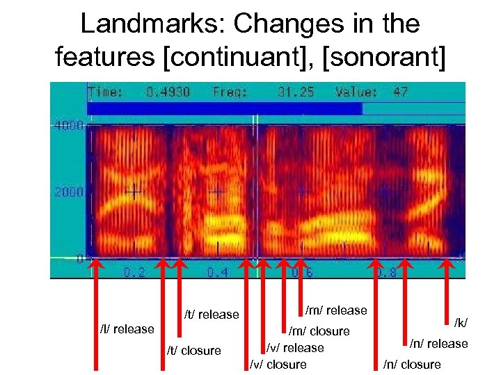 Landmarks: Changes in the features [continuant], [sonorant] /t/ release /l/ release /t/ closure /m/