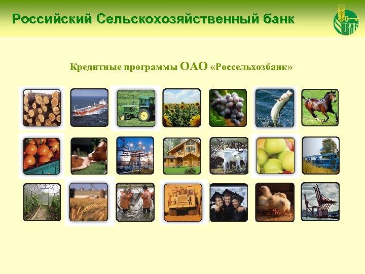 Российский Сельскохозяйственный банк Кредитные программы ОАО «Россельхозбанк»