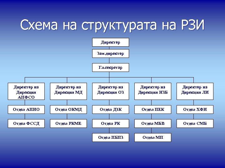 Схема на структурата на РЗИ Директор Зам. директор Гл. секретар Директор на Дирекция АПФСО