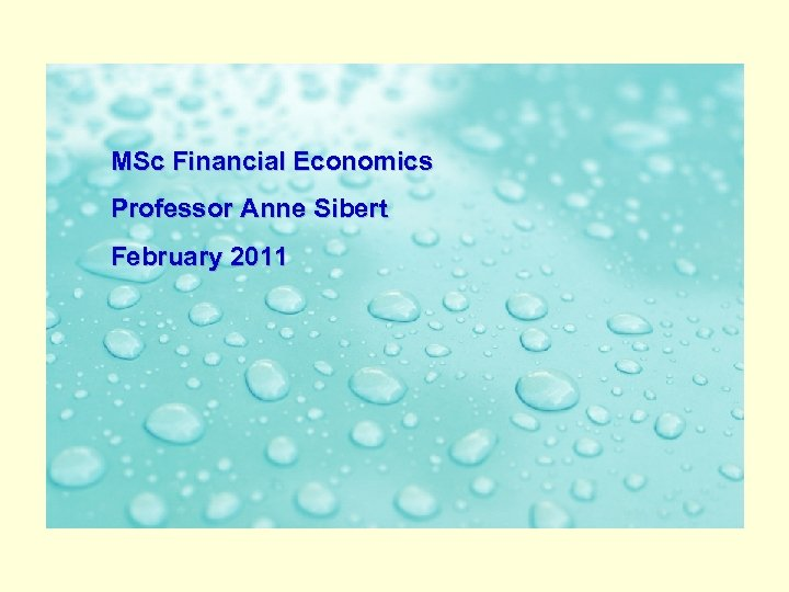 MSc Financial Economics The Banking System in February 2011 an Age of Turbulence Professor