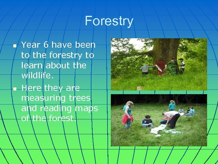 Forestry n n Year 6 have been to the forestry to learn about the
