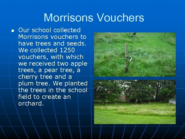 Morrisons Vouchers n Our school collected Morrisons vouchers to have trees and seeds. We
