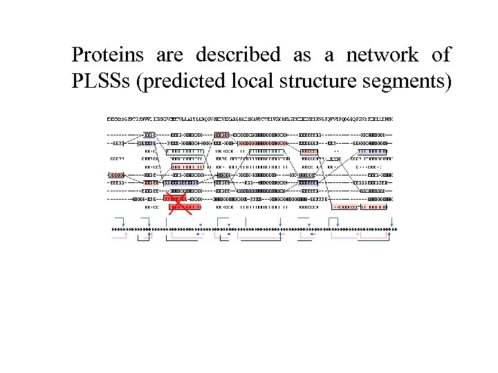 Proteins are described as a network of PLSSs (predicted local structure segments)