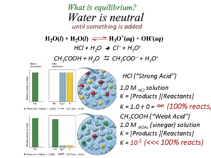 What is equilibrium? Water is neutral until something is added HCl + H 2