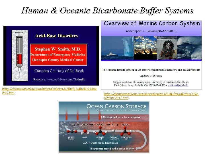 Human & Oceanic Bicarbonate Buffer Systems http: //chemconnections. org/general/chem 121/Buffers-Med. Pres. htm http: //chemconnections.