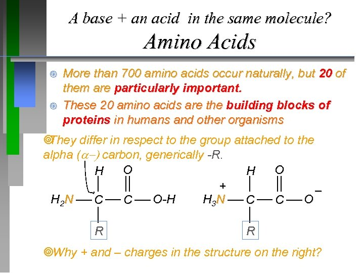 A base + an acid in the same molecule? Amino Acids ¥ ¥ More