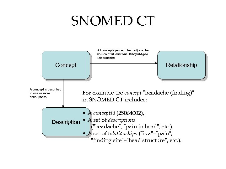 SNOMED CT All concepts (except the root) are the source of at least one