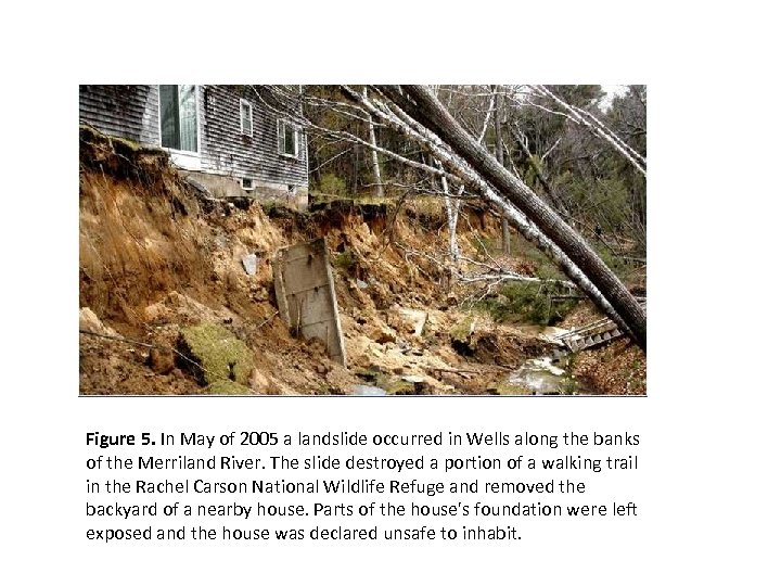 Figure 5. In May of 2005 a landslide occurred in Wells along the banks