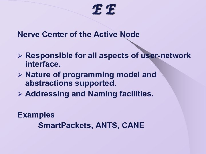 EE Nerve Center of the Active Node Responsible for all aspects of user-network interface.