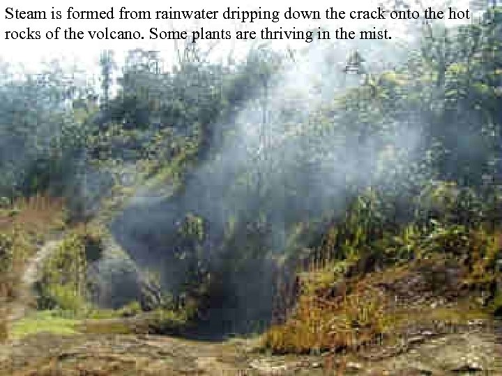 Steam is formed from rainwater dripping down the crack onto the hot rocks of