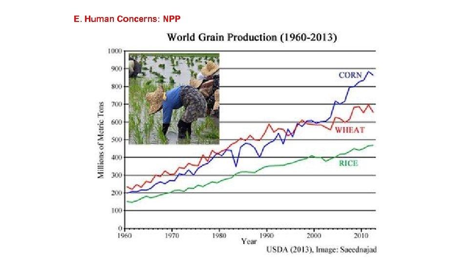 E. Human Concerns: NPP