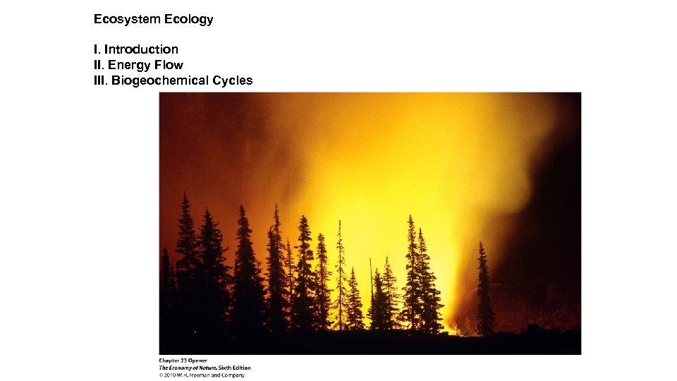 Ecosystem Ecology I. Introduction II. Energy Flow III. Biogeochemical Cycles