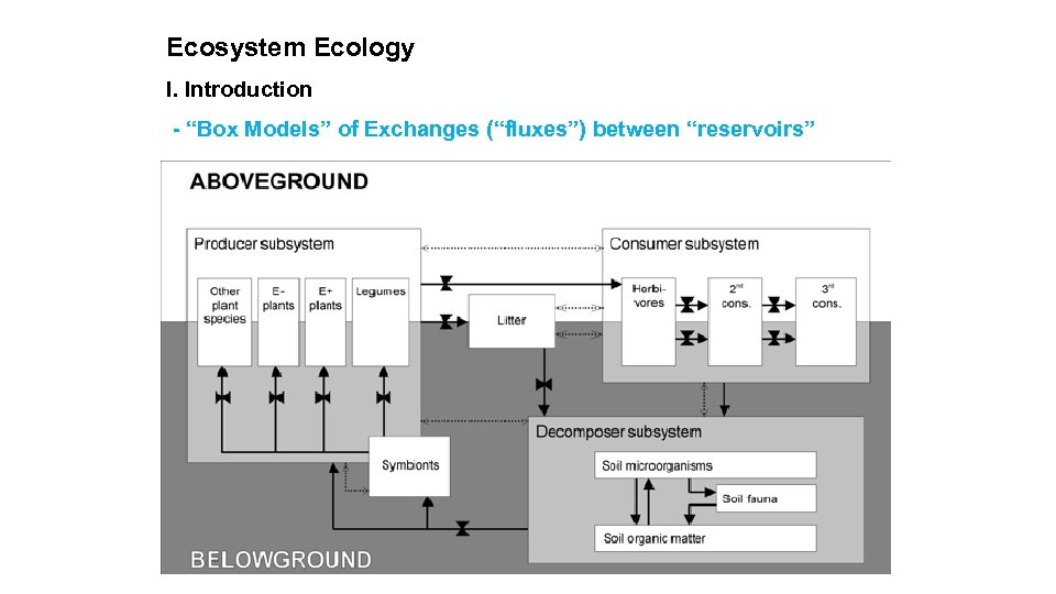 """Ecosystem Ecology I. Introduction - """"Box Models"""" of Exchanges (""""fluxes"""") between """"reservoirs"""""""