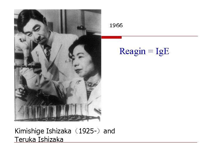 1966 Reagin = Ig. E Kimishige Ishizaka(1925 -)and Teruka Ishizaka