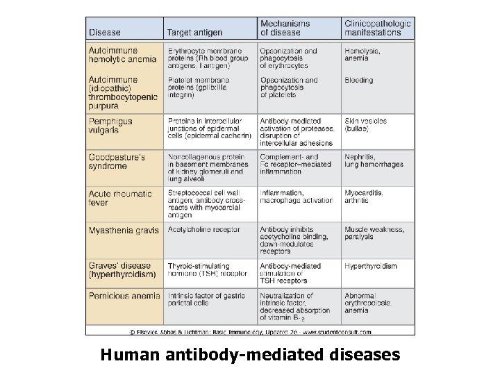 Human antibody-mediated diseases