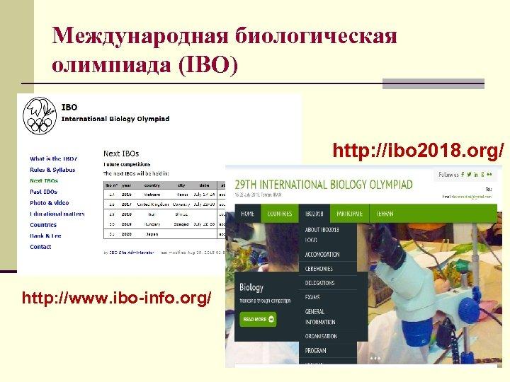 Международная биологическая олимпиада (IBO) http: //ibo 2018. org/ http: //www. ibo-info. org/