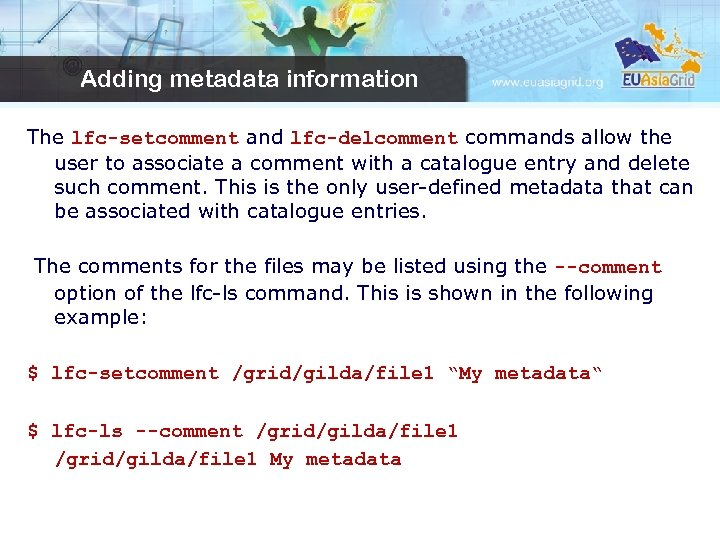 Adding metadata information The lfc-setcomment and lfc-delcomment commands allow the user to associate a