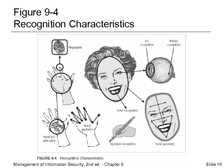 Figure 9 -4 Recognition Characteristics Management of Information Security, 2 nd ed. - Chapter