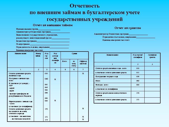 Отчетность по внешним займам в бухгалтерском учете государственных учреждений Отчет по внешним займам Отчет