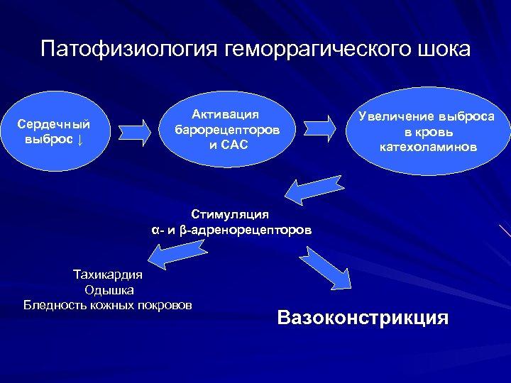 Патофизиология геморрагического шока Сердечный выброс ↓ Активация барорецепторов и САС Увеличение выброса в кровь