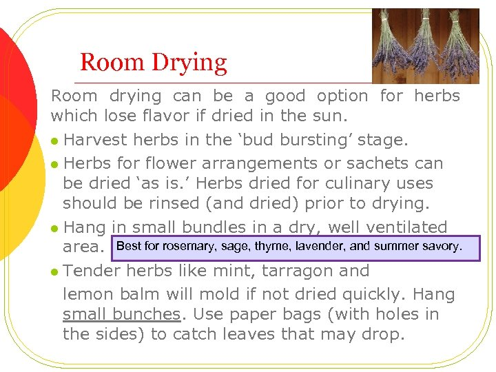 Room Drying Room drying can be a good option for herbs which lose flavor