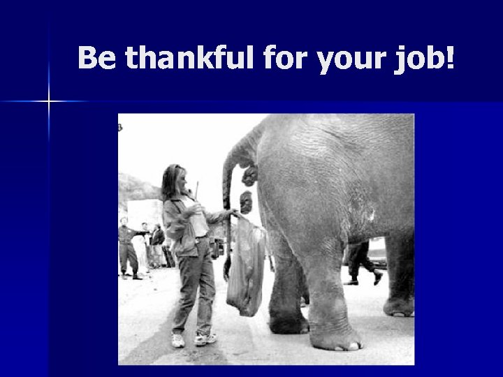 Be thankful for your job!