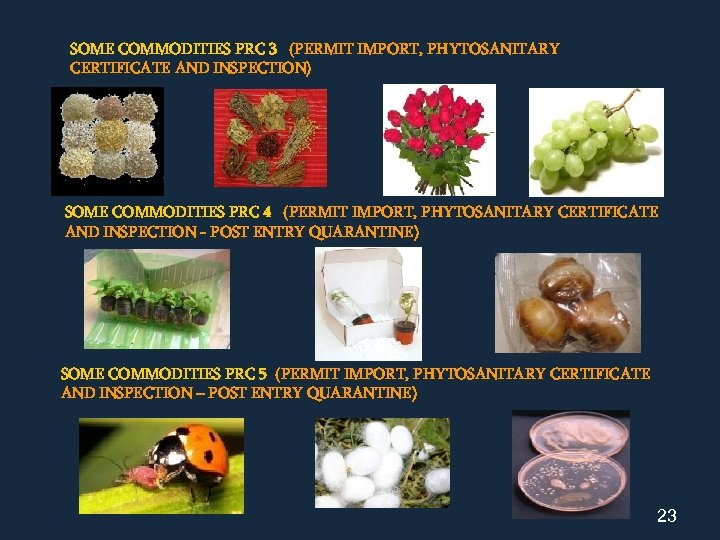 SOME COMMODITIES PRC 3 (PERMIT IMPORT, PHYTOSANITARY CERTIFICATE AND INSPECTION) SOME COMMODITIES PRC 4