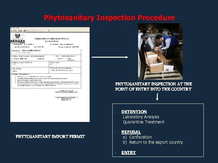 Phytosanitary Inspection Procedure PHYTOSANITARY INSPECTION AT THE POINT OF ENTRY INTO THE COUNTRY •
