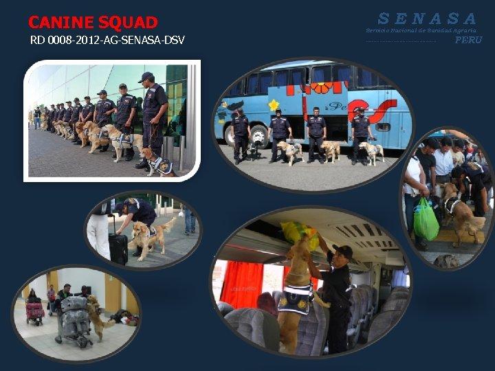 CANINE SQUAD RD 0008 -2012 -AG-SENASA-DSV SENASA Servicio Nacional de Sanidad Agraria ----------------------- PERU
