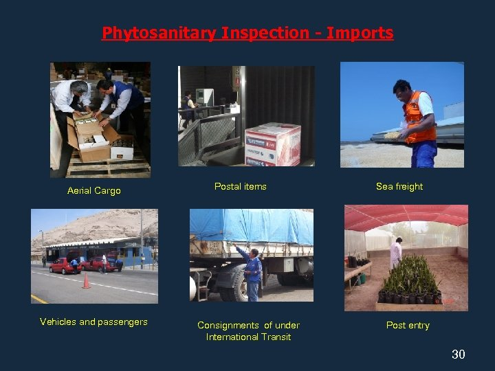 Phytosanitary Inspection - Imports Aerial Cargo Vehicles and passengers Postal items Consignments of under