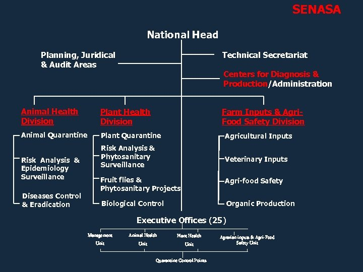 SENASA National Head Planning, Juridical & Audit Areas Technical Secretariat Centers for Diagnosis &