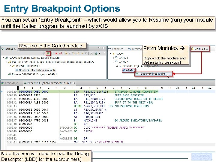 """Entry Breakpoint Options You can set an """"Entry Breakpoint"""" – which would allow you"""