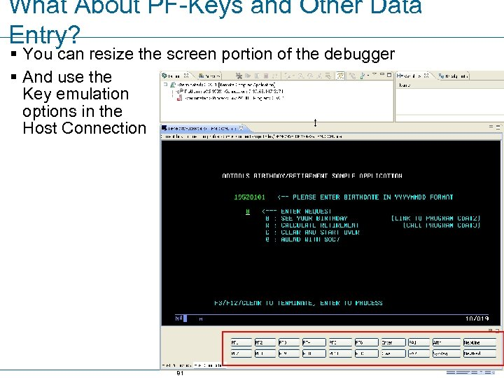 What About PF-Keys and Other Data Entry? § You can resize the screen portion
