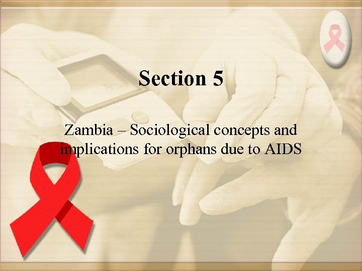 Section 5 Zambia – Sociological concepts and implications for orphans due to AIDS
