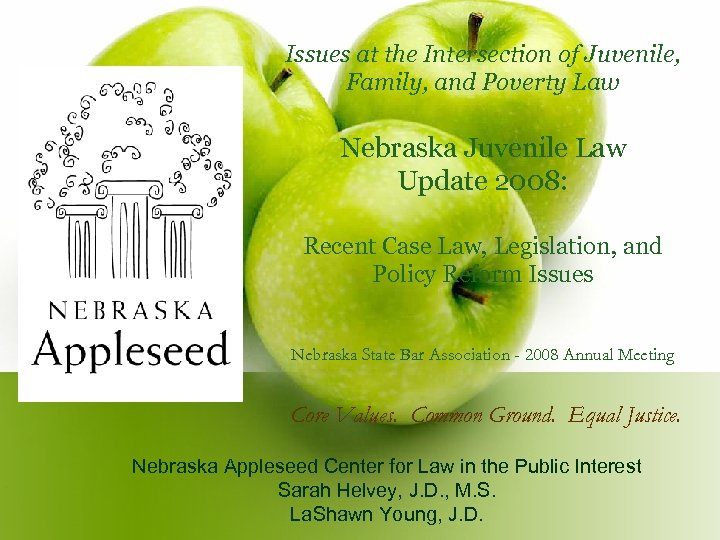 Issues at the Intersection of Juvenile, Family, and Poverty Law Nebraska Juvenile Law Update