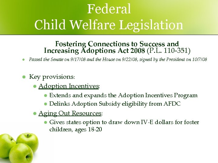 Federal Child Welfare Legislation Fostering Connections to Success and Increasing Adoptions Act 2008 (P.