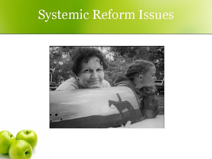 Systemic Reform Issues