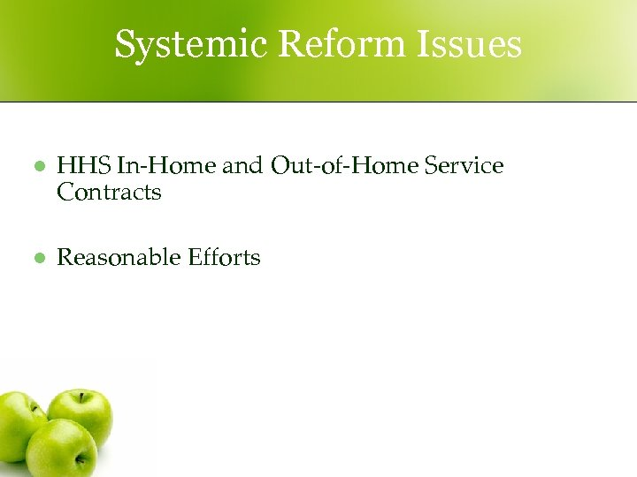 Systemic Reform Issues l HHS In-Home and Out-of-Home Service Contracts l Reasonable Efforts