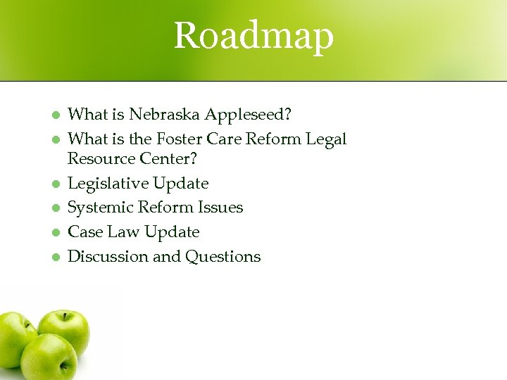 Roadmap l l l What is Nebraska Appleseed? What is the Foster Care Reform