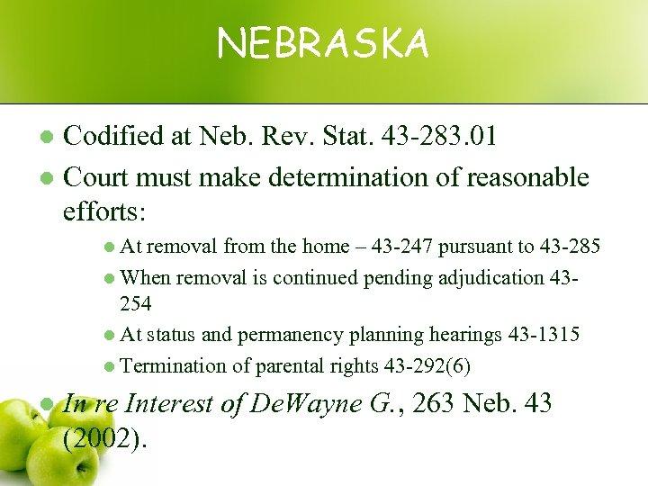 NEBRASKA Codified at Neb. Rev. Stat. 43 -283. 01 l Court must make determination