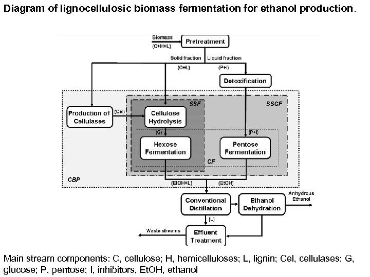 Diagram of lignocellulosic biomass fermentation for ethanol production. Main stream components: C, cellulose; H,