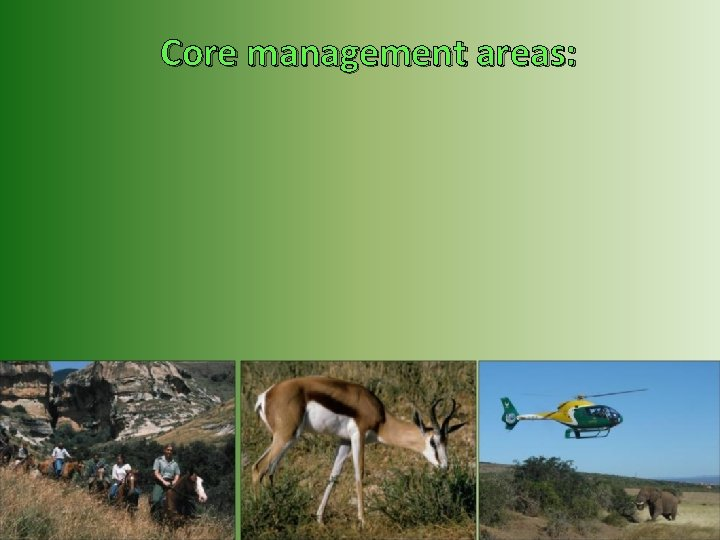 Core management areas: